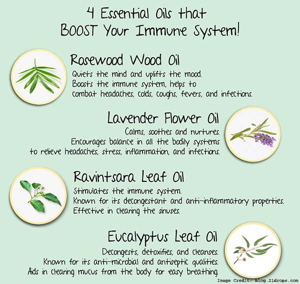 4 Essential Oil Info