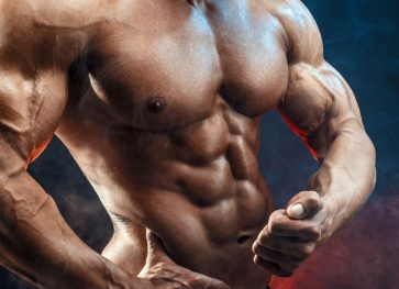 How do Muscles Grow? The Fundamentals & Mechanics of Muscle Building