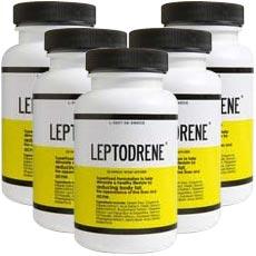 Leptodrene