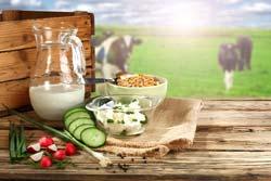 Bone Health Nutrition