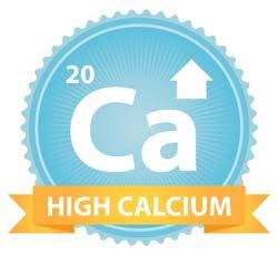 Best Calcium