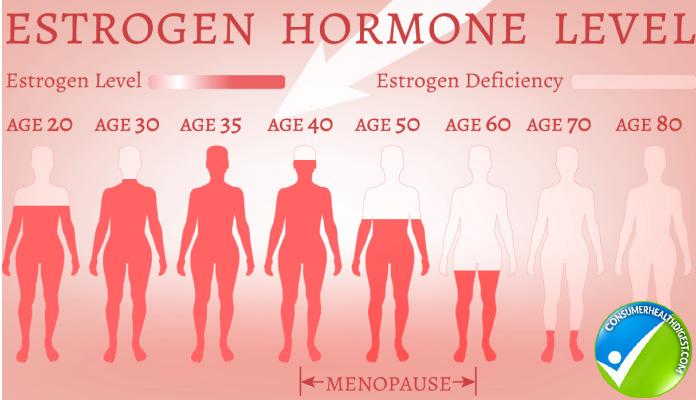 Estrogen Dominance in Women