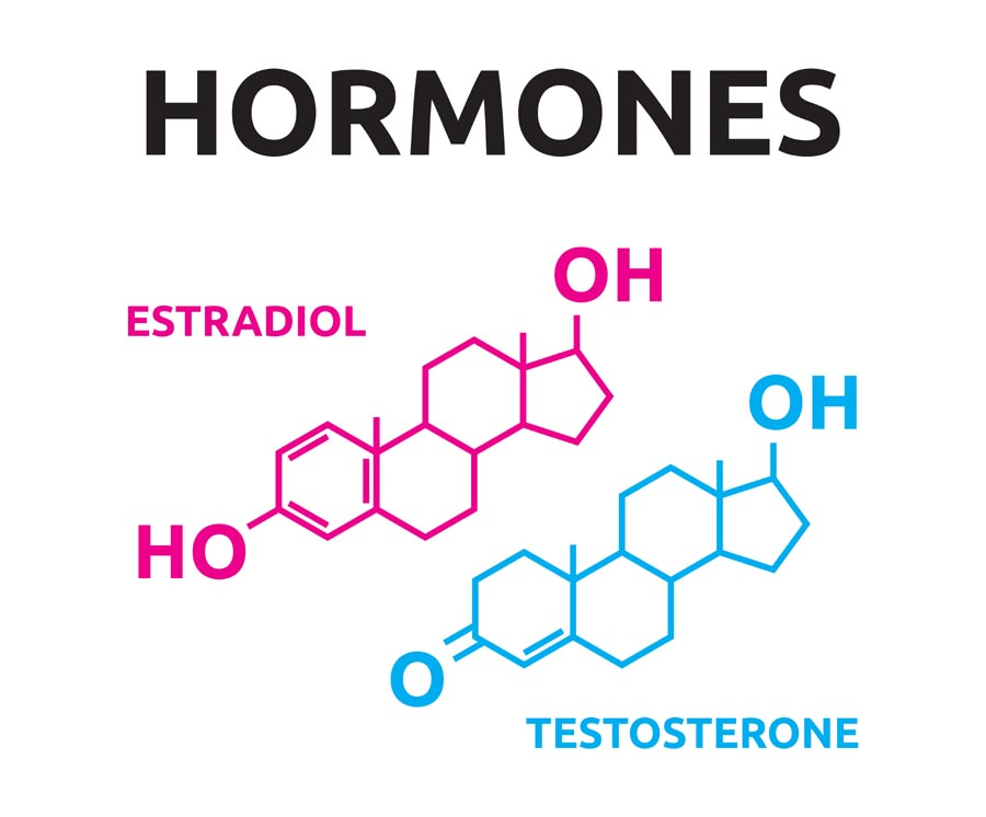 Female sex hormones definition importance types and more the main female sex hormone is estrogen progesterone is also a crucial female sex hormone these hormones are produced in the gonads and control the voltagebd Gallery