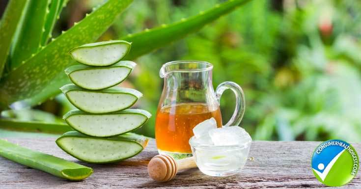 Absorb Your Skin Oil using Aloe Vera
