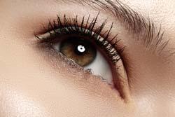 eyelash-mites