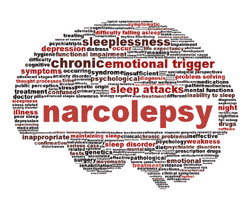 Narcolepsy and Sleep