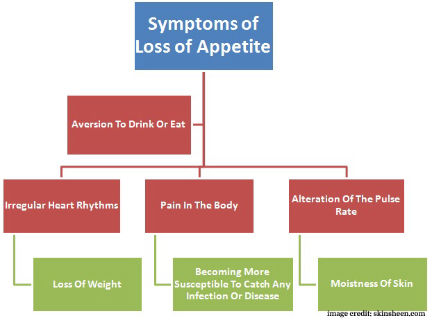Symptoms of Loss of Appetite