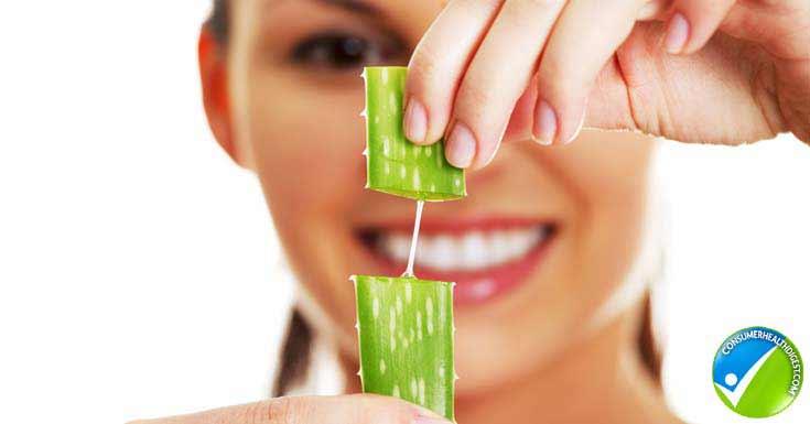 Aloe-Vera For Sunburn Wrinkles