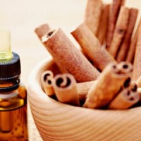 Cinnamon Oil for Lip