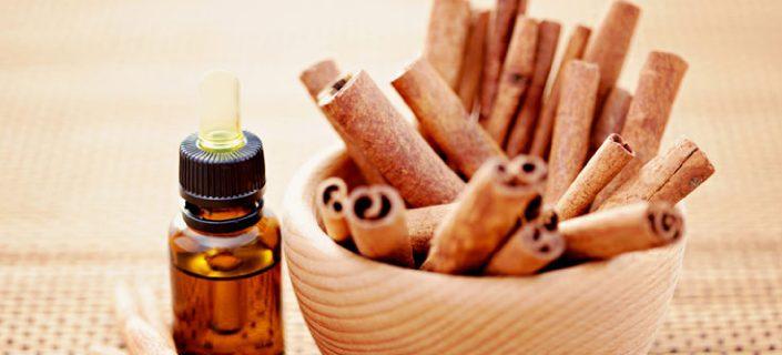 Cinnamon Oil for Lip