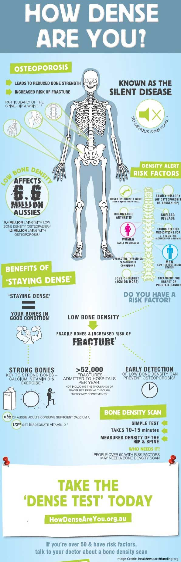 Facts Bone Density Info