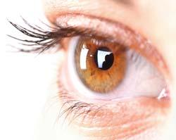 Eyelashes Grow Back after Being Burned?