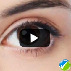 Human Eye Structure: Eye Anatomy Explained