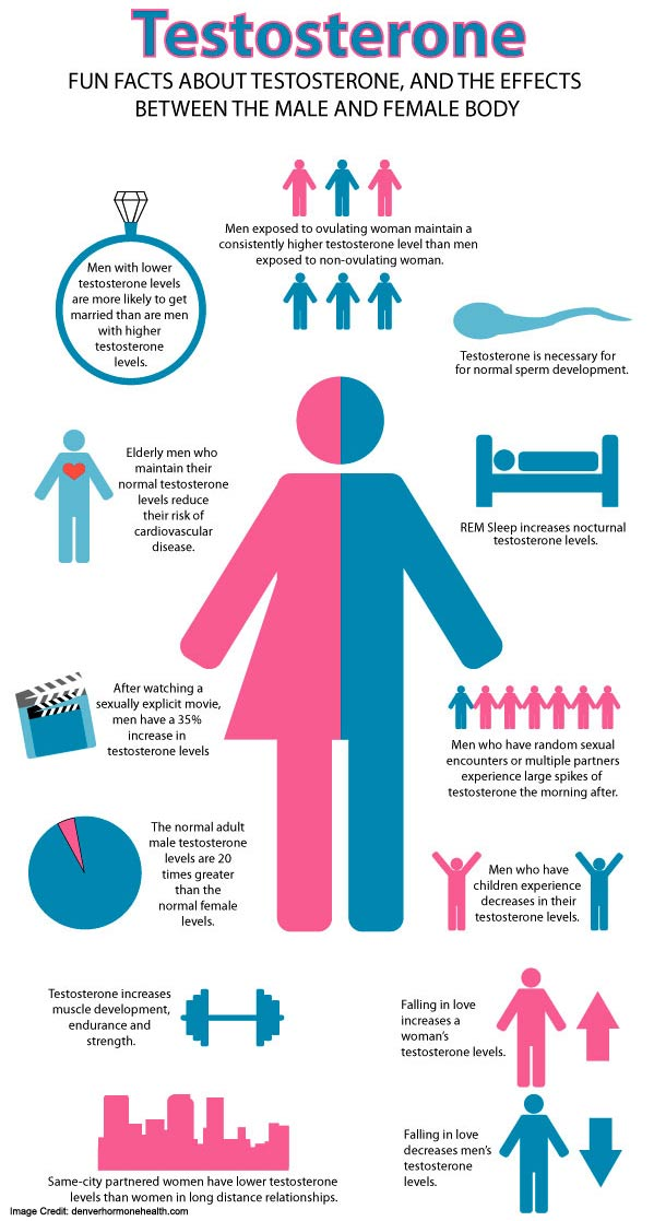 Testosterone control info