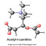 Acetyl-l-Carnitine: Benefits, Side-Effects, Dosage and Interactions