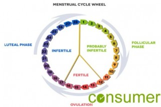 Menstrual Cycle Hormones