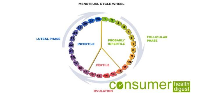 Menstrual Cycle Hormones