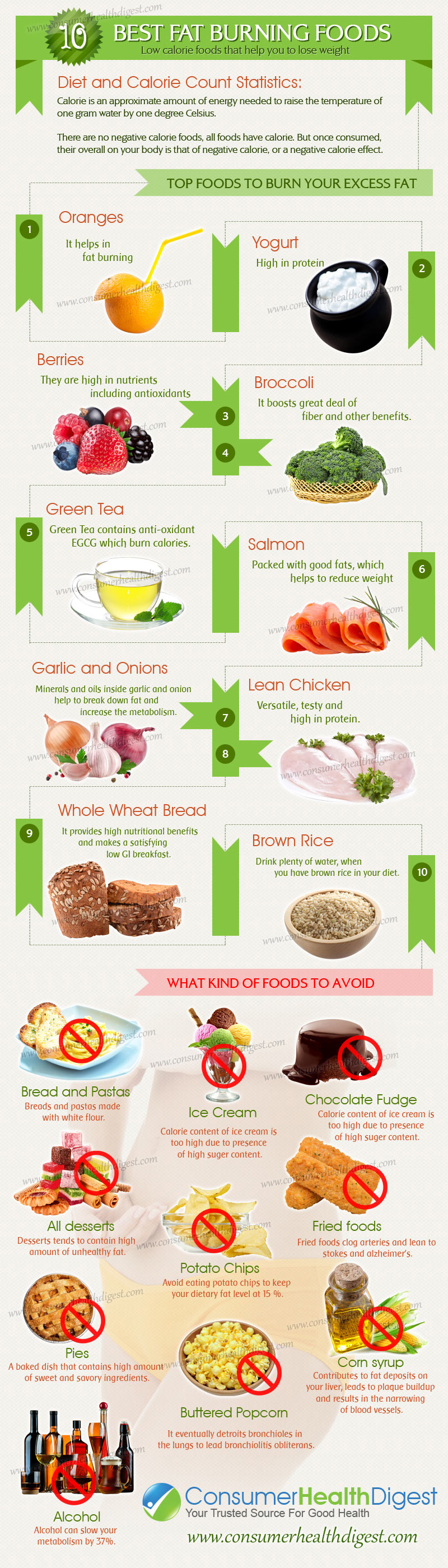 10 Best Fat Burning* Foods