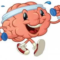 Exercises for your Healthy Brain
