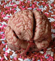 Brain foods improve memory