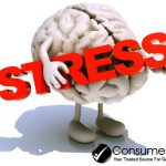 Physical Exercise Protects the Brain from Stress-Induced Depression