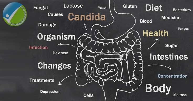 Colon Candida