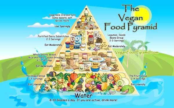 Vegan diet pyramid