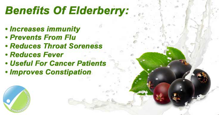 Health Benefits Of Elderberry
