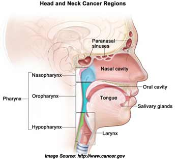 Head and Neck Cancers Symptoms