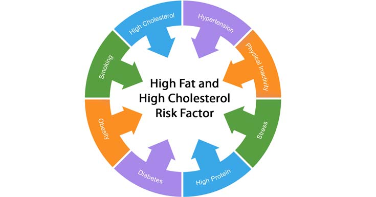 High Fat and High Cholesterol Risk Factor