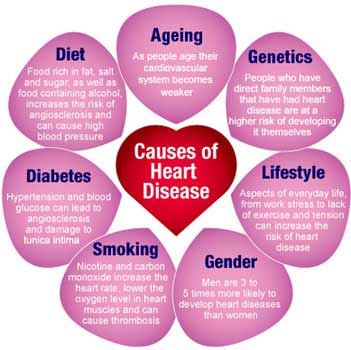 Causes And Risk Factors Of Heart Disease