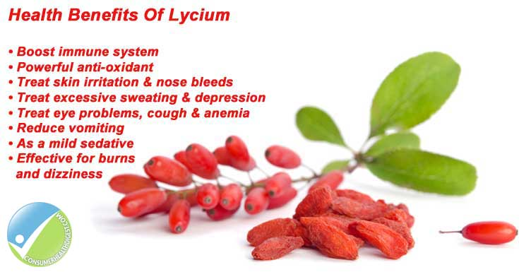 Health Benefits Of Lycium