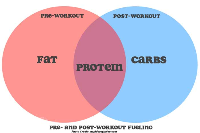 Pre and  Post Workout Facts