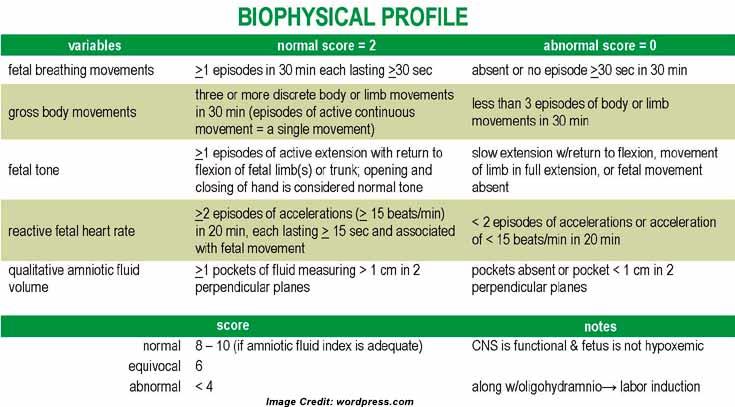 amniotic fluid index chart pdf