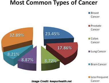 Cancer Disease Chart