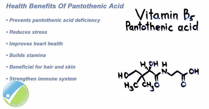 Health Benefits of Pantothenic Acid
