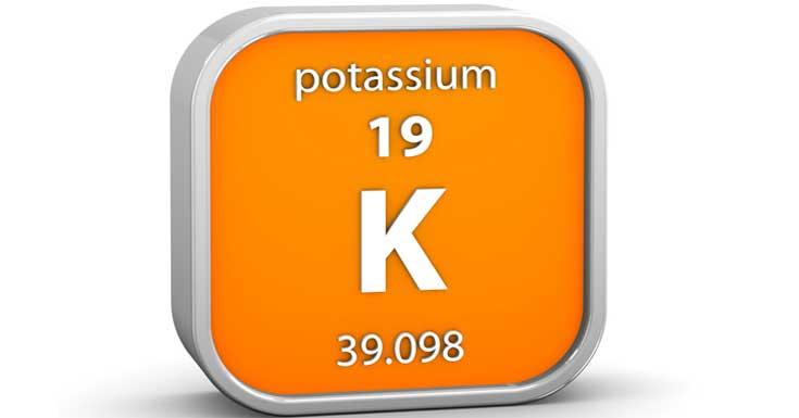 Potassium Improves Blood Pressure in Teen Girls