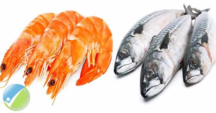 Krill Oil vs. Fish Oil