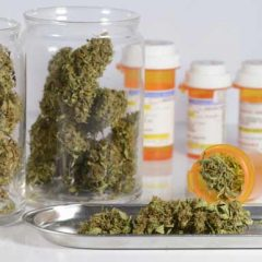Pros and Cons of Using Medical Marijuana