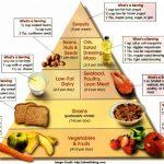 Effective Diet Info