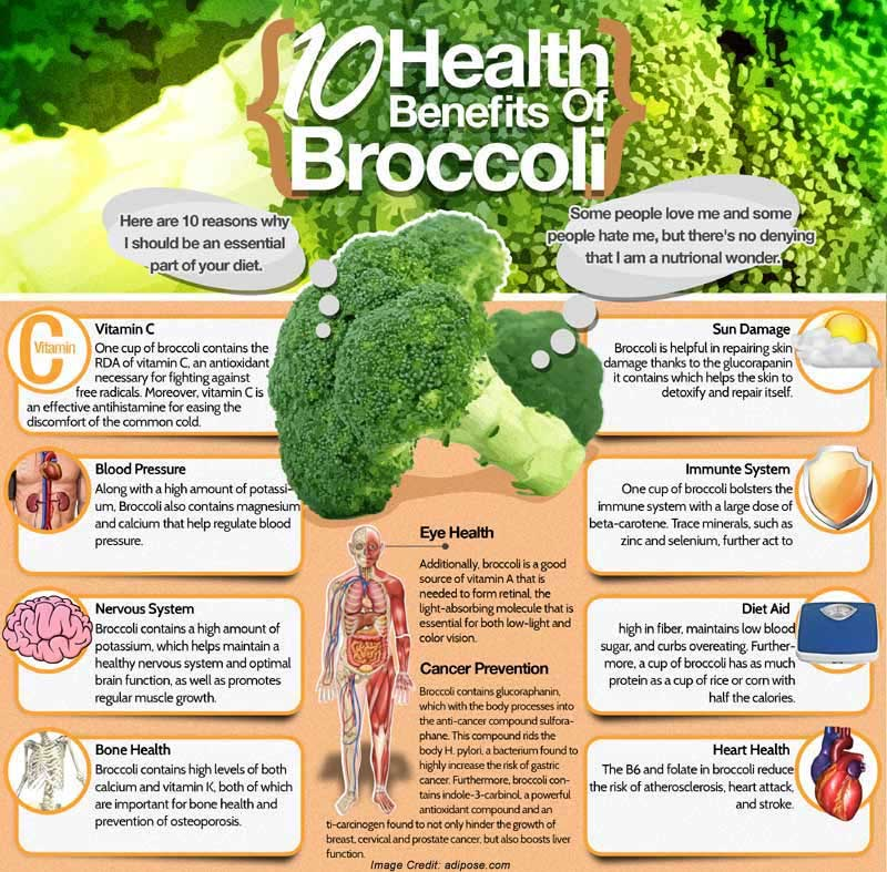 Broccoli Health Benefits Info