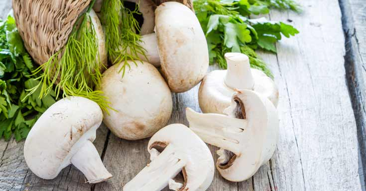 Healthy Benefits of eating Mushrooms