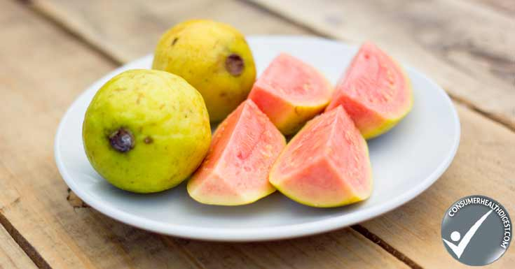 objectives for guava leaves extract The benefits of guava for the skin  guava is a tropical fruit that tastes like a cross between a strawberry and a pear, and it provides several nutrients that.