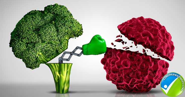 Broccoli is good for your bone health