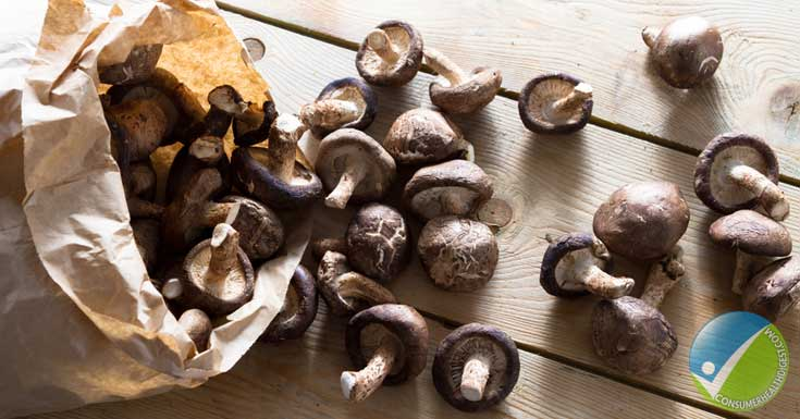 Mushrooms Get Darker and Dark Spots Appear
