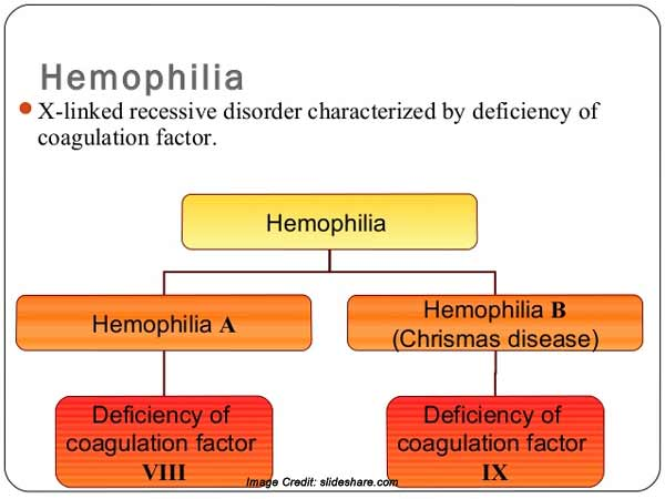 a report on hemophilia a bleeding disorder Summary hemophilia b is a rare genetic bleeding disorder in which affected individuals have insufficient levels of a blood protein called factor ix factor ix is a.