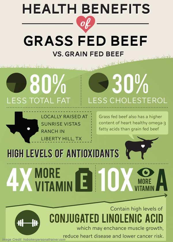 Grass Fed Beef Info