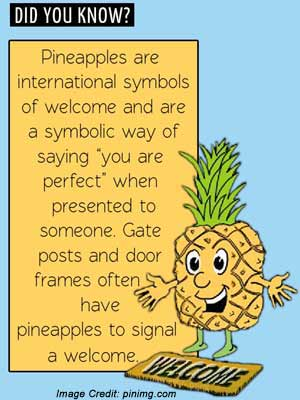 Pineapples Facts