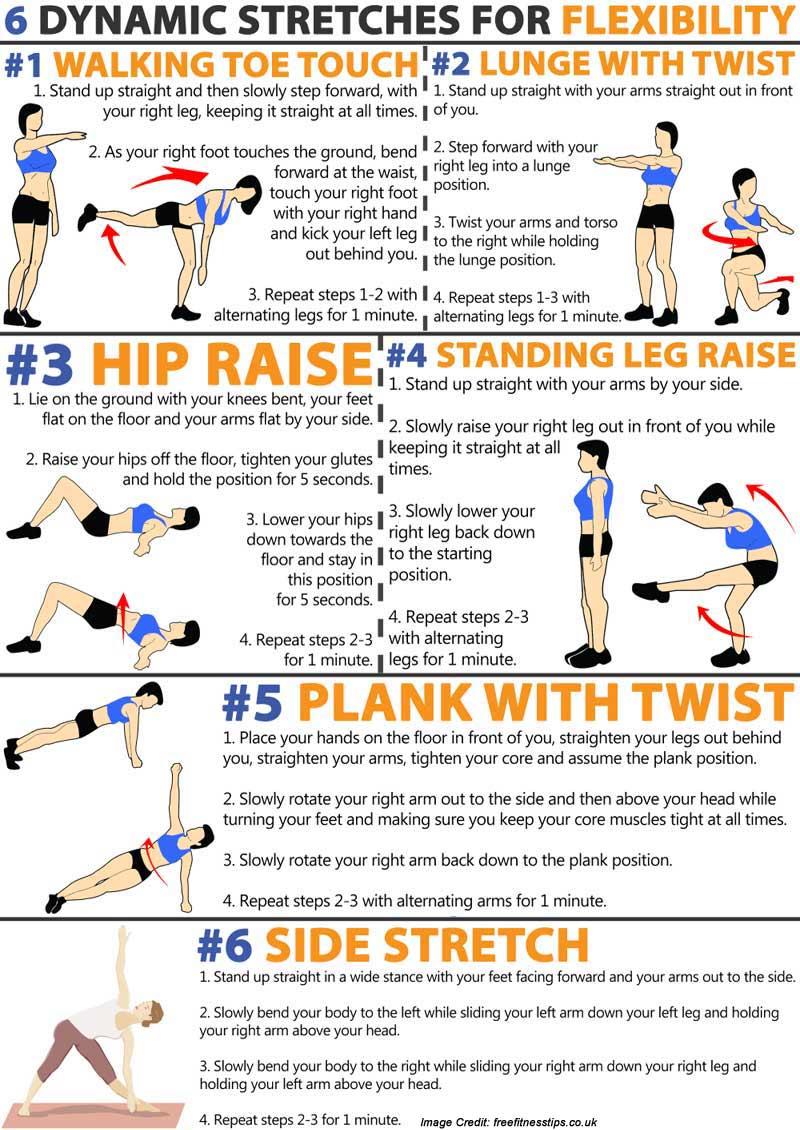 Ballistic Stretching Info