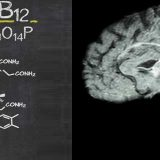 How Age, Autism and Schizophrenia is Linked to Vitamin B12?